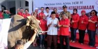 Telkomsel Distribusi Bantuan Hewan Qurban Hingga Ke Kepulauan Seribu