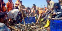 Kenapa Gubernur Anies Bersama PPSU Bersihkan Muara Angke Tidak Pakai Alat Berat? Ini Alasannya!