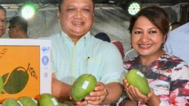 Photo of Pasarkan Harumanis secara dalam talian – Raja Muda Perlis