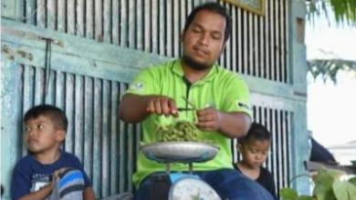 Photo of Kacang bulu jana pendapatan RM10,000