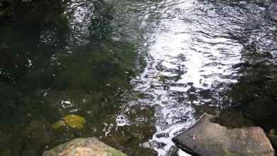 Photo of Air: Pili kering, sungai jadi pilihan kalau tidak ke kolam renang