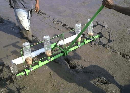 alat penanam padi