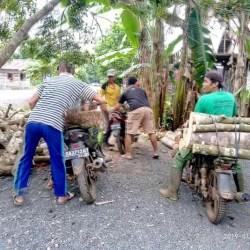 Cari Kayu Bakar Hingga Ribuan Bungkus Nasi Disiapkan di Haul Guru Sekumpul