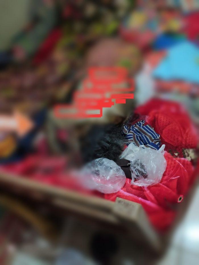 GEGER Temuan Nenek Membusuk Setelah Warga Dobrak Pintu Rumah Korban