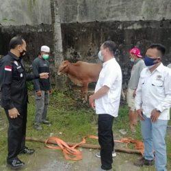 DITERIMA PWI Kalsel Hewan Kurban dari Kapolda