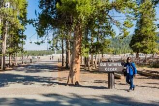 Old Faithful Gêiser no Parque Yellowstone