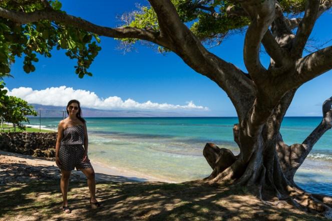 Vista da Praia de Honokowai em Maui