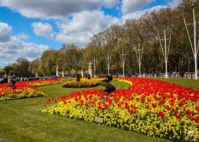 Buckingham Gardens nas Melhores Dicas de Londres