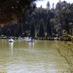 Lago Negro nas Melhores Dicas de Gramado e Canela