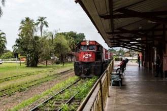 Linha Férrea ainda em uso em Joinville