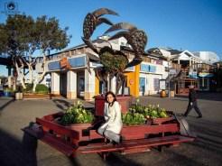 Fisherman's Wharf em o que fazer em San Francisco california