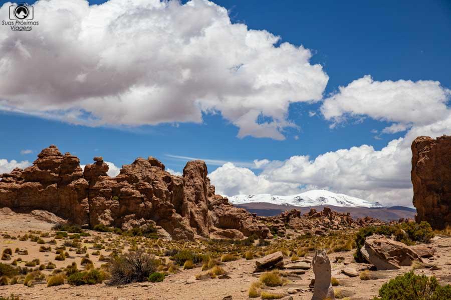 Imagem da formação rochosa chamada Bosque de Piedra