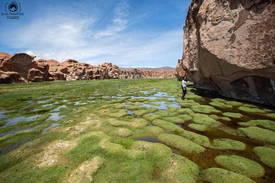 Foto da nascente da Laguna Negra na Bolivia