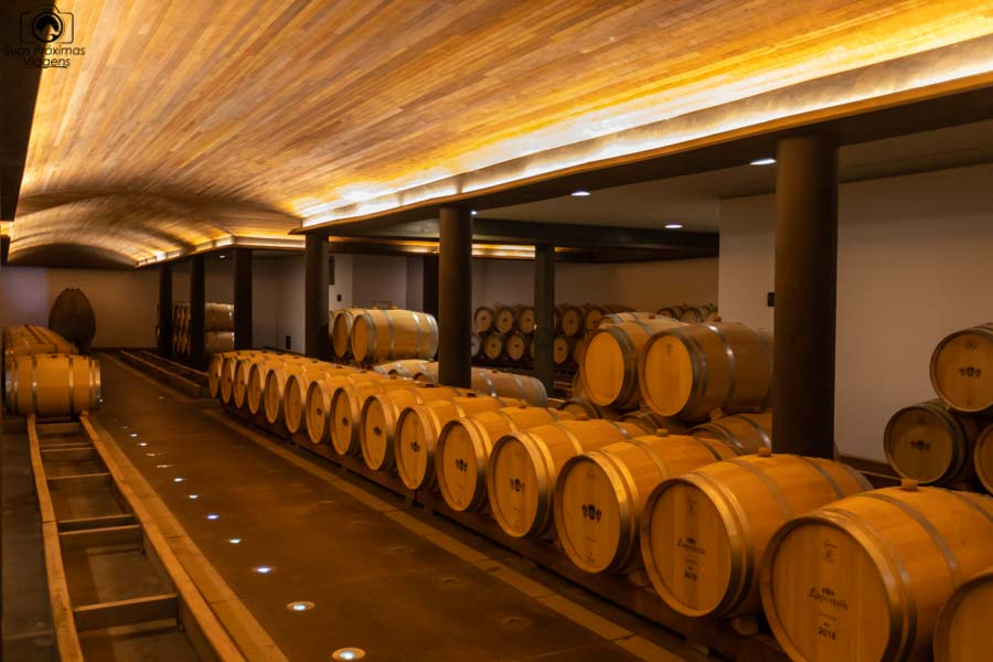 Imagem dos barris de amadurecimento do clos apalta um dos melhores vinhos chilenos