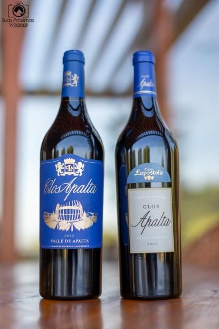 imagem dos vinhos Clos Apalta