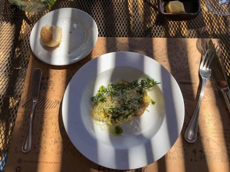 Imagem do 2o prato do almoço harmonizado da Vinícola Matetic no Vale de Casablanca