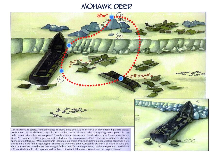 Mohawk Deer