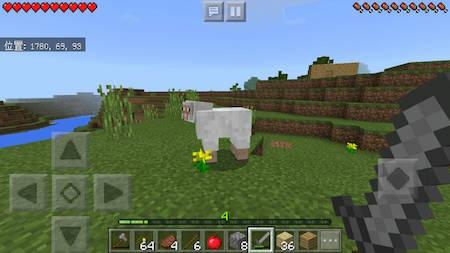羊を見つける