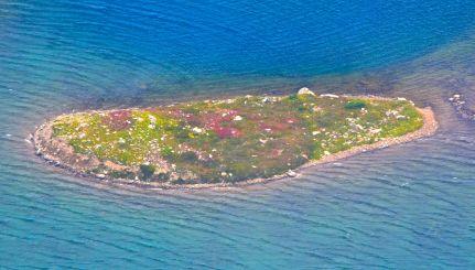 Island in Doubtful lake