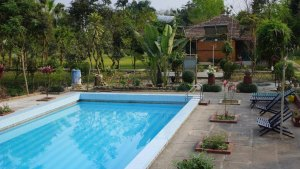 Swimming Pool at Baghmara Resort,Chitwan