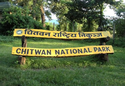 Chitwan National Park.