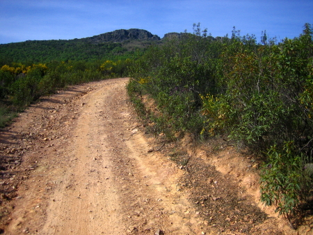 Cuesta camino al Alto de Arrebatacapas