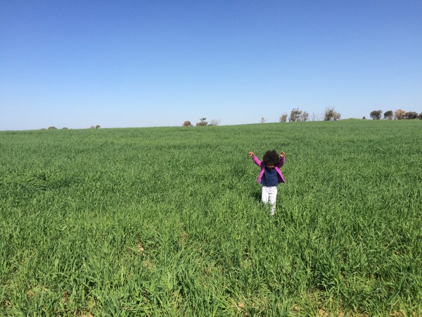 Jasmine running through a grassy field at Darom Adom, the Southern Anemone Festival