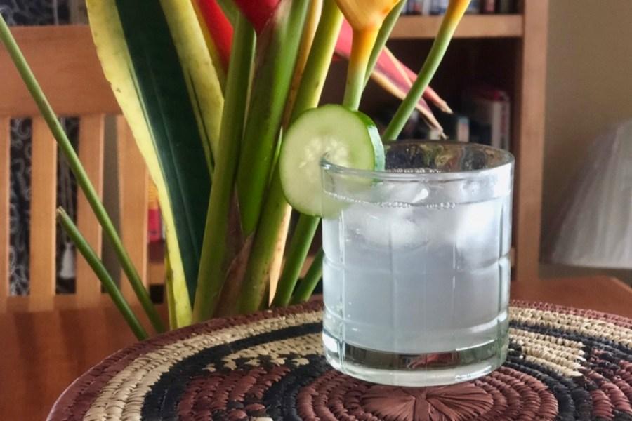 Cucumber Infused Vodka Rickey