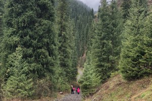 Hiking to Kaindy Lake, Kazakstan