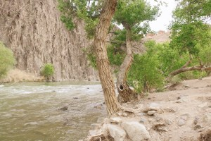 River at the end of the Charyn Canyon Walk