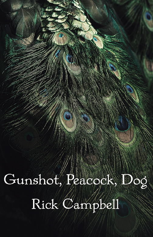 Gunshot, Peacock, Dog by Rick Campbell, cover design by Jacqueline V. Davis