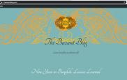 The Bazant Blog