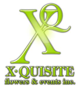 XQ-logo