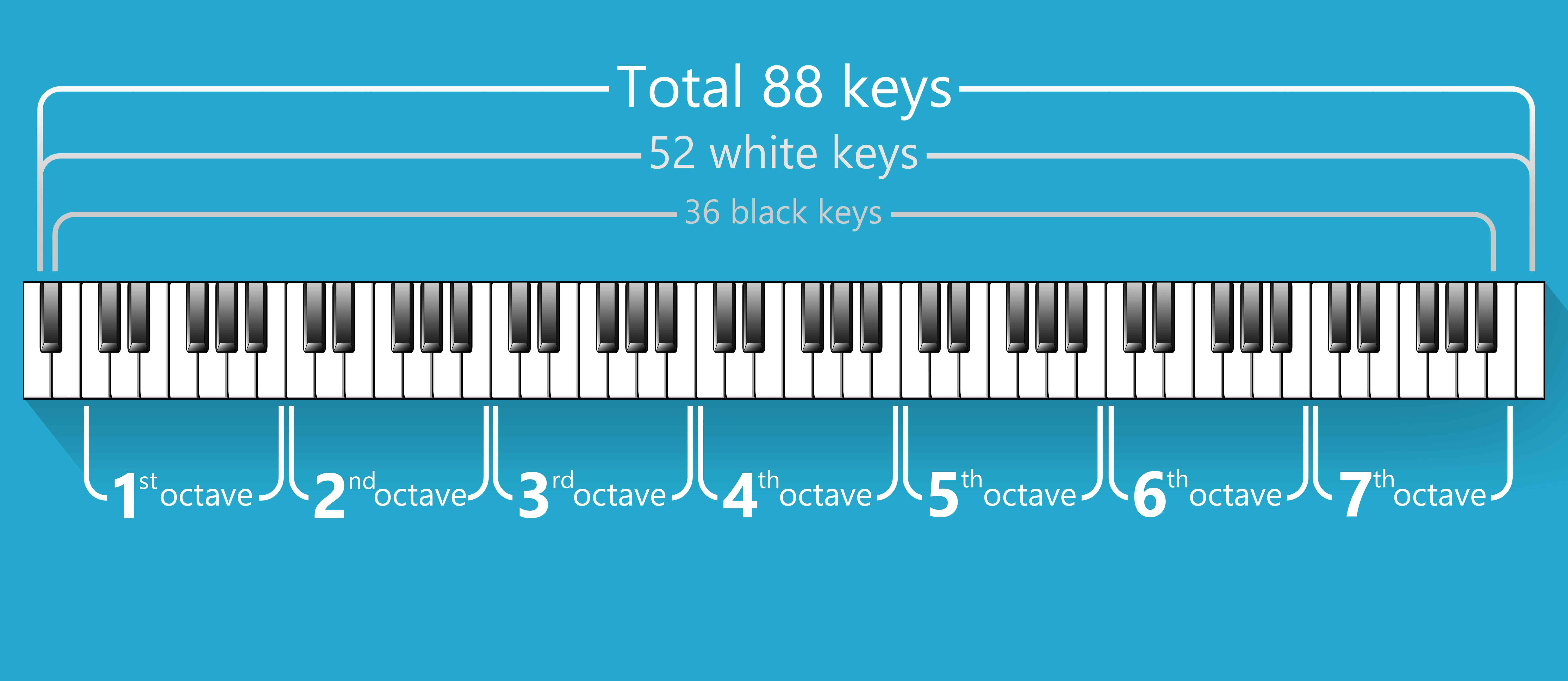 piano keys and notes the definitive guide � kathy music