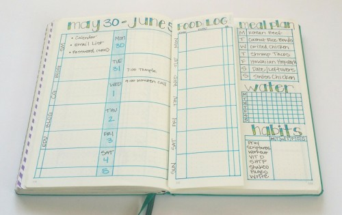 Weekly Bullet Journal layout with dutch door.