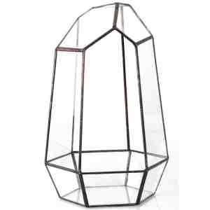 irregular terrarium planter glass