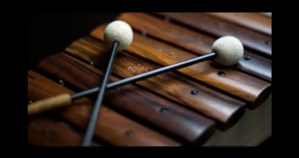 Xylophone Mallets – April's Submissive Training Journal