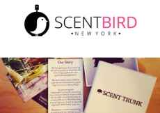 scent bird vs scent trunk