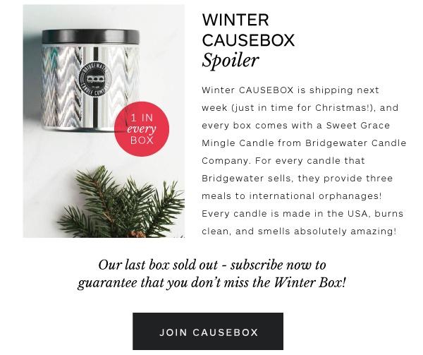 Spoiler Alert – Winter Causebox Spoiler #1 – Subscriptionista