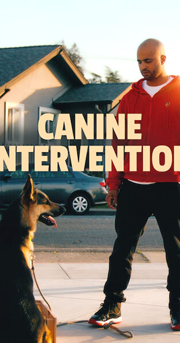 Canine Intervention TV Series (2021)