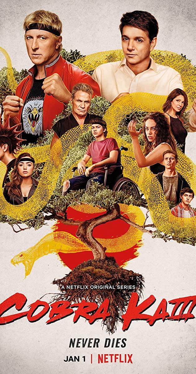 Cobra Kai TV Series (2021) Season 3