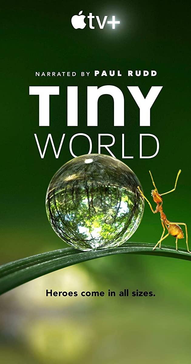 Tiny World TV Series (2020)