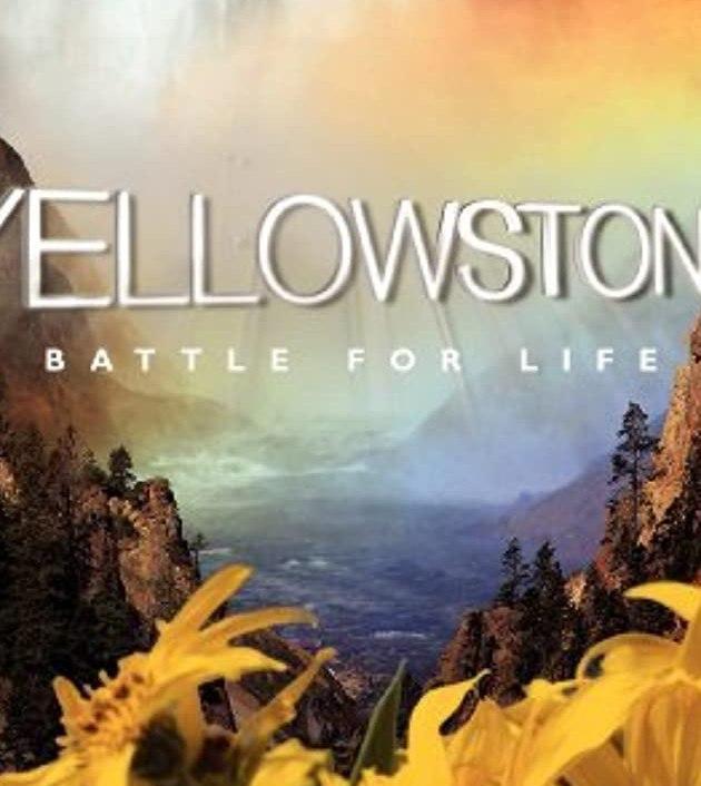 Yellowstone (2009)