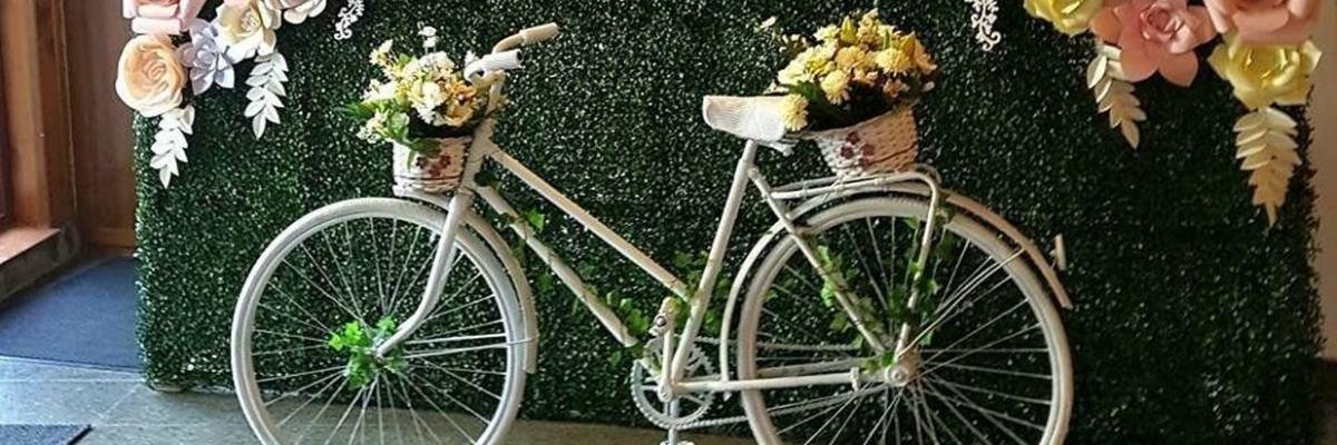 La tine, Brașov, vreau să vin! Nu cu bicicleta, dar tot pe roti