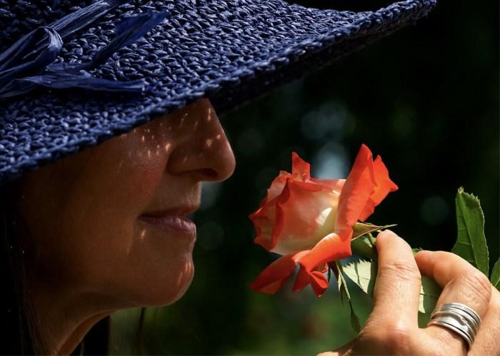 Anii bătrâneții și anii înțelepciunii