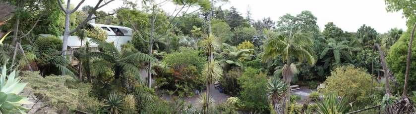 Wharepuke Subtropical Garden