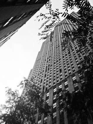 New York2013-21