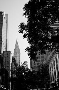 New York2013-49