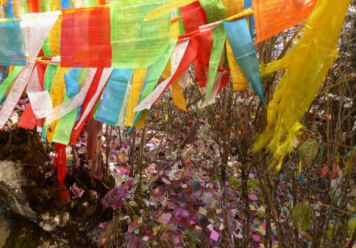 WORDS AND WIND -- Prayer flags flying.