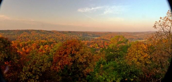 COLORFUL -- Vivid post-drought foliage.